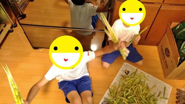 根曲がり竹の子下処理をする子供