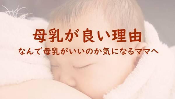 母乳の良さって何?