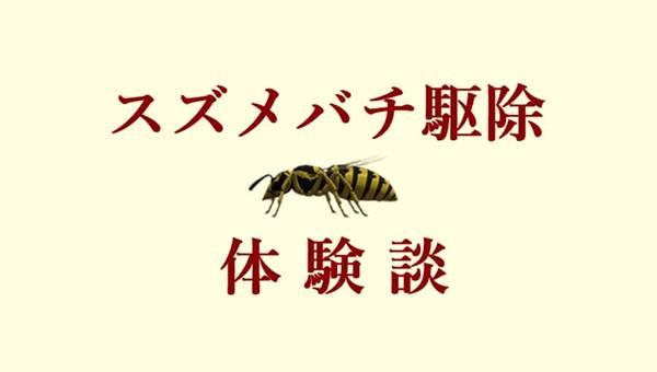 スズメバチ自力駆除方法【体験談】