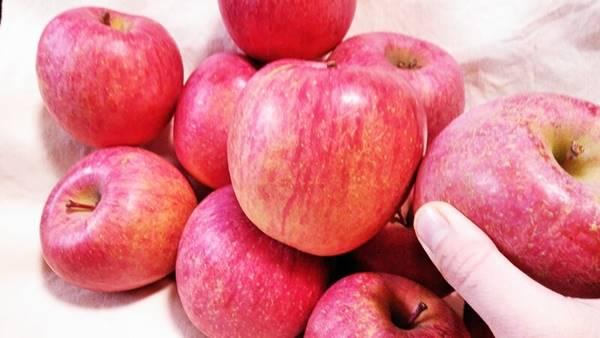 小林果樹園の家庭用りんご